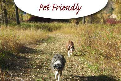 Pet Friendly Campgrounds