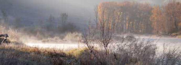 Morning views hunting camp at Wagonhammer RV Park