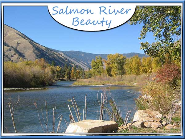 Salmon River view