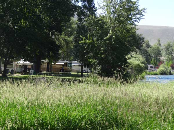 Shaded Camping Sites