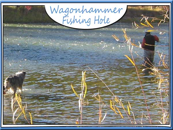 Salmon River fishing holes
