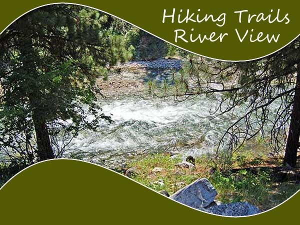 Hiking Trails Wagonhammer Campground